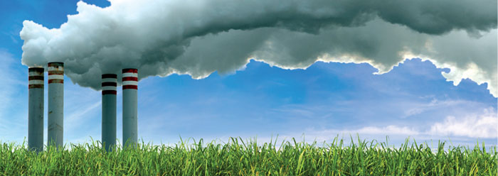 How Excess Carbon Dioxide Affects Plant Life