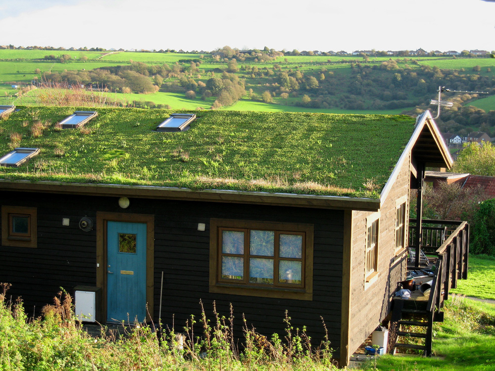 Know That Not All Eco Roofs Are Green Roofs