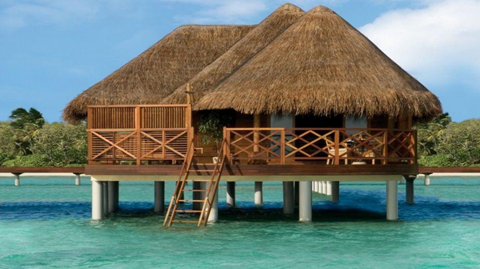 Exotic Hut