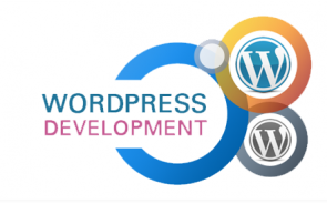 Important Tips To Get Web Development Done With WordPress