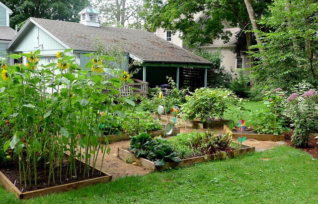 How To Organize Your Very Own Organic Garden