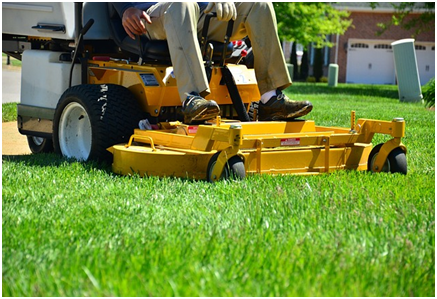 How To Make Your Lawn Better Than Your Neighbour's