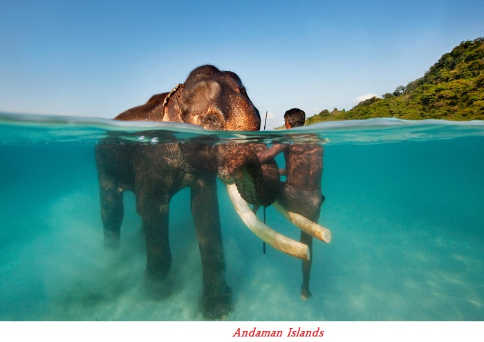 MY TRIP TO THE PARADISE IN SOUTH ASIA – INDIA PENNISULAR