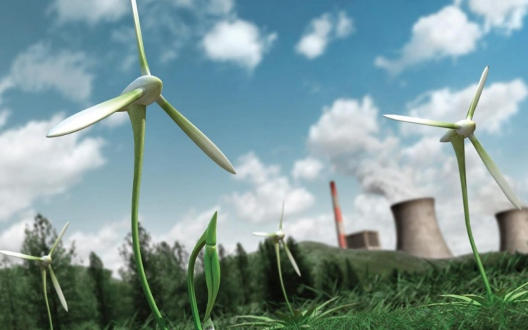 Global Green Energy Firms Eyeing Indian Entry