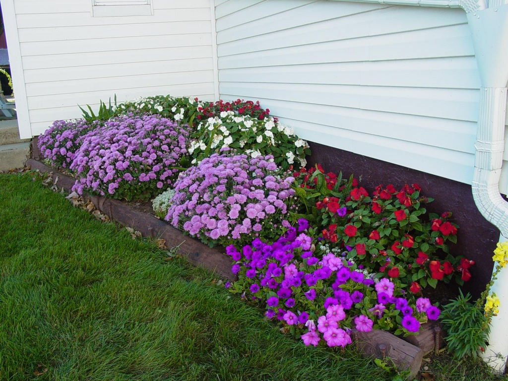 How To Maintain A Garden During Winter Season?
