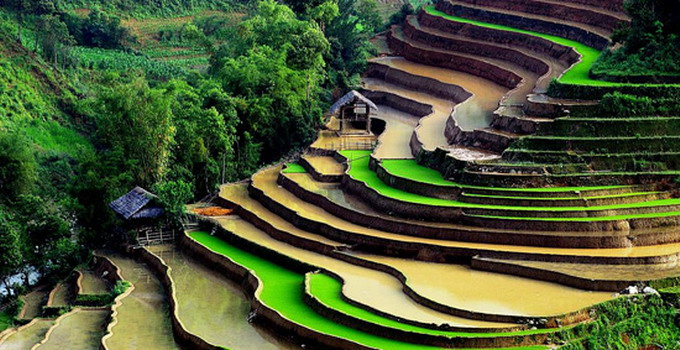 North Vietnamese Travel & Tour Packages