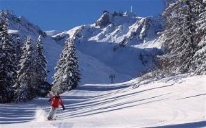 adventurous skier