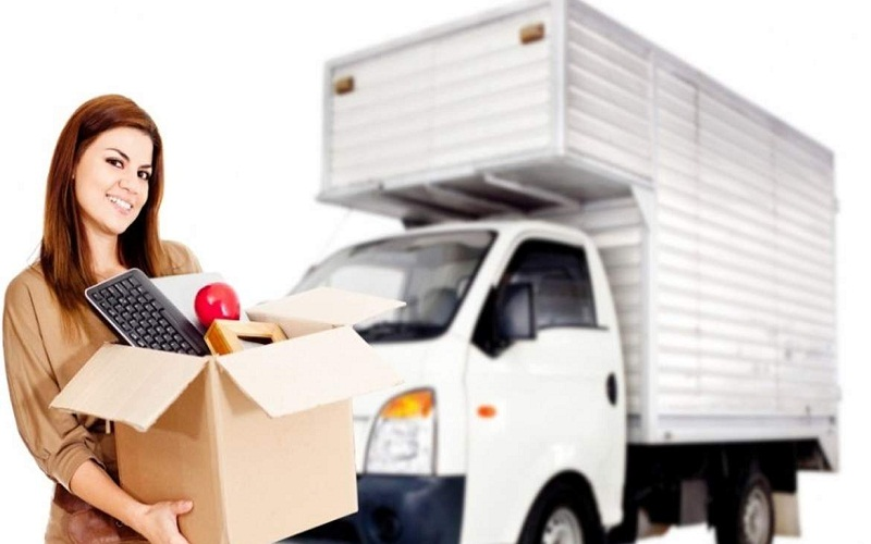 Professional Movers: Essential Features To Look For