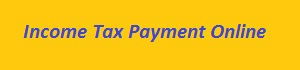 Easy Ways To Pay Your Income Tax Online