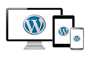 respnsive web design