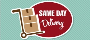 Looking For Same Day Courier Company?