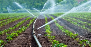 A Look Into The Concept Of Irrigation