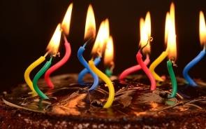 cake online Udaipur