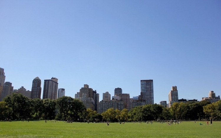 Perfect Picnic Spots In New York City