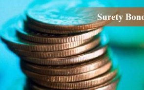 Facts About Surety Bond In Construction Industry