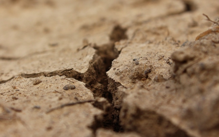 How To Protect Soil Erosion Of Sloping Terrains