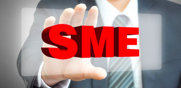 Subject Matter Experts or SME's- What Do They Do