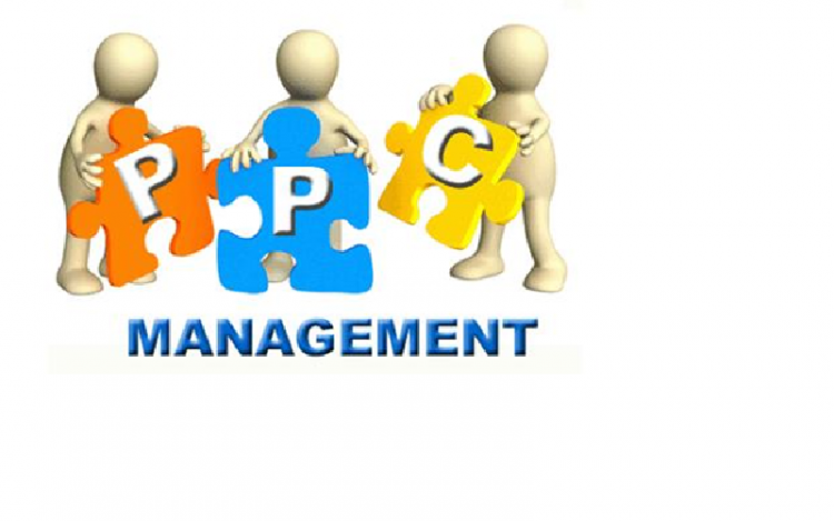 PPC Management Services For Exponential Growth
