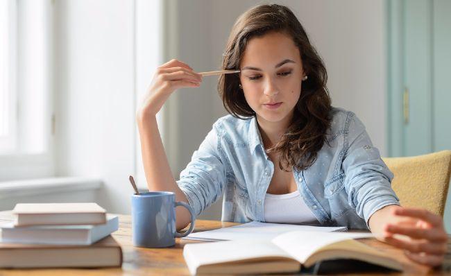 HOW TO WRITE A PERSUASIVE LITERARY ESSAY