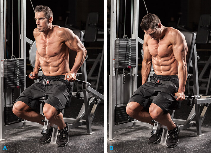 Does Clenbuterol Help Lose Weight?