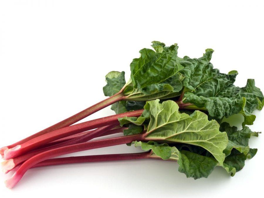 Surprising Health Benefits Of Rhubarb Herb