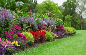 Top Pruning Tips To Keep Your Garden In Good Health