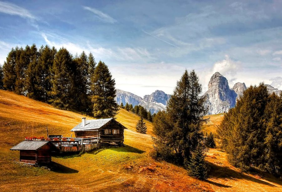 Why Rent A Log Cabin For Your Next Vacation