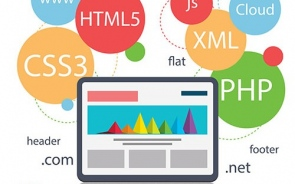 What Are The Processes Of A Better Website Development and Designing