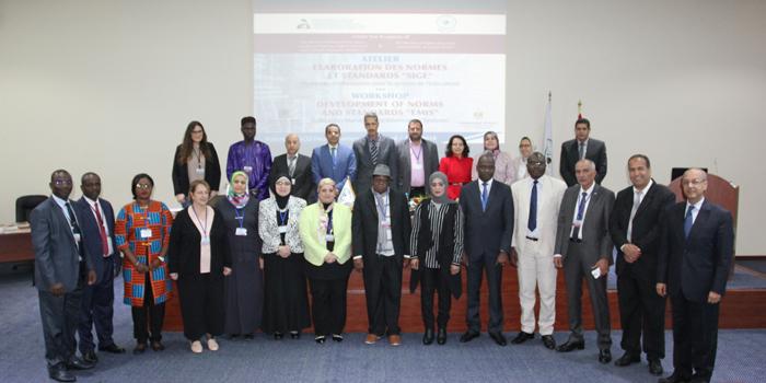 Workshop On Development Of EMIS Norms And Standards kicks Off