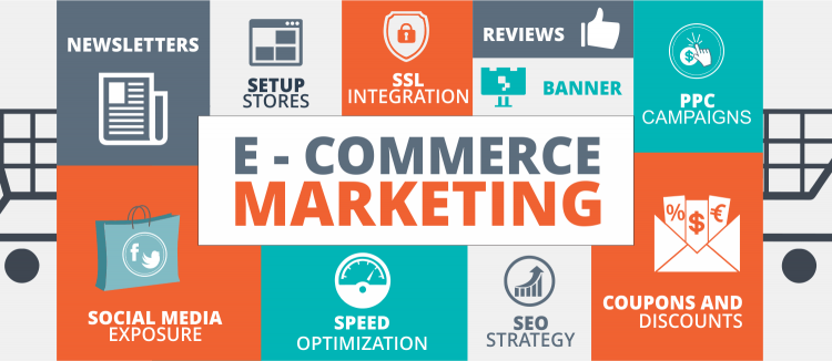 Hire E-commerce SEO Expert & Flourish Your Business Successfully