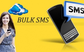 Procedures To Make Bulk SMS Marketing Work For You