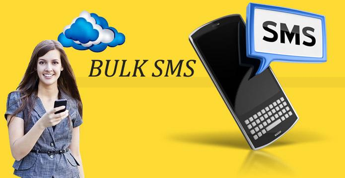 Procedures To Make Bulk SMS Marketing Work For You