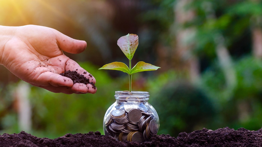 savings with Axis Small Cap Fund