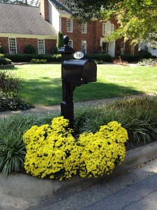 Refresh Your Curb Appeal With These 6 Ideas