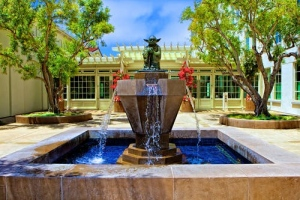 Water Features Ideas to Enhance Your Backyard
